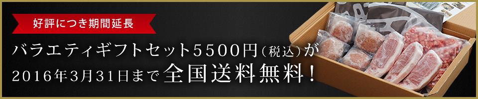 バラエティギフトセット(5500) 2ヶ月間配送料無料!